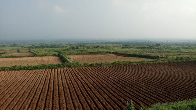 Excellent investment opportunity in an integrated operational Farm in Theni
