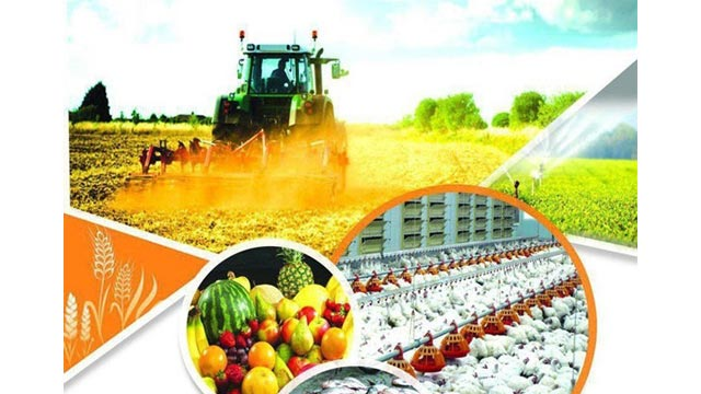 Agritech, Foodtech and Rural Tourism Startup looking for Investors