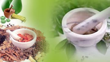 Looking for Venture Capitalists for Ayurveda Medical Tourism Spots