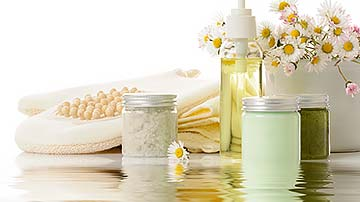 Exporter of Pharmaceuticals, Ayurvedic and Cosmetic Products Seeking Investment